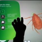 Galerie-de-l-evolution-Interactif