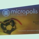 micropolis-cité-des-insectes